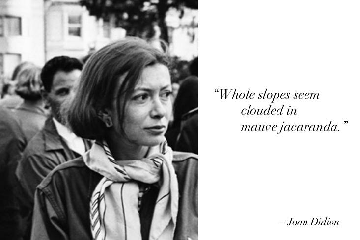 joan didion white album essay summary In 1979, joan didion published a collection of essays entitled the white album that detailed her life, experiences, and observations in los angeles, california during the 1960s one of the defining essays of her work is the white album , a personal narrative of the same name that chronicles didion's experience with the 1960s musical scene.